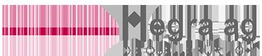 Hegra AG Logo